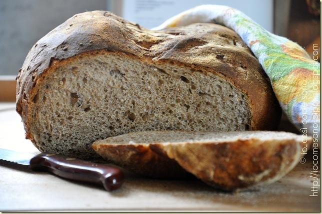 Pane nero ai 7 cereali a lievitazione naturale4