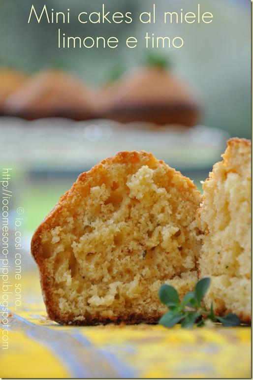 Mini cakes al miele  limone e timo1