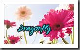 dragonfly-blog