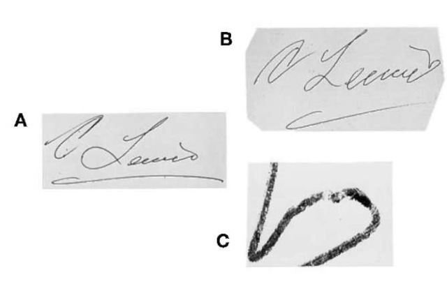 (A) Genuine signature 'C. Lewis' and (B) quickly written freehand simulation of (A). Signature (B) shows errors in letter proportion and size relationships and an uncharacteristic pen lift in the final part of the signature (C).
