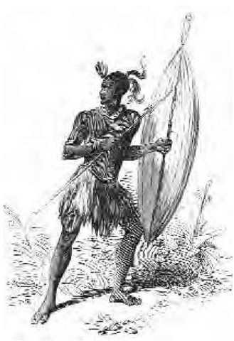 A picture of a Zulu warrior holding a large shield and a short spear (assagai) characteristic of their armed combat system. This illustration appeared in a British publication during the war between British settlers and the native population in Africa, 1851.