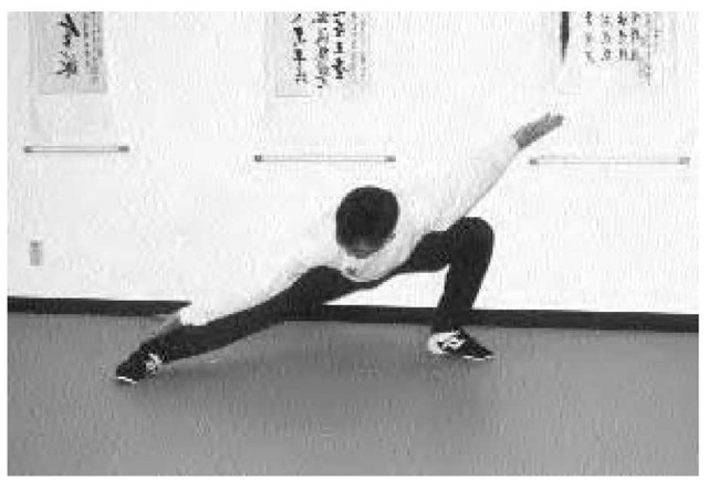 Baguazhang is closely associated with Daoist yoga or inner alchemy and other Chinese esoteric traditions. Cultivation of inner energy (qi) and breathing practices are taught along with the fighting techniques. A student of baguazhang practices these moves at the Shen Wu Academy of Martial Arts in Garden Grove, California.