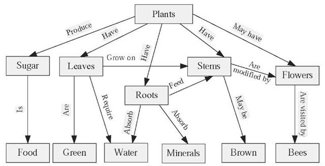 Plants in NanoPics: figure 2 concept map about plants