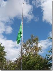 Hastear Bandeira (3)