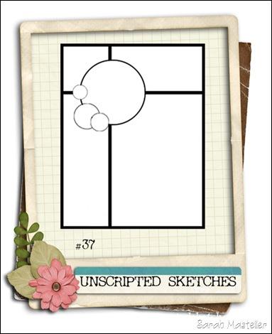 SK sketch 10 US sketch 37