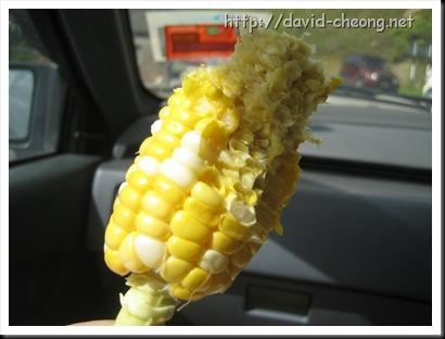 第一次生吃玉蜀黍