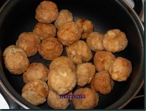 albóndigas de pollo fritas, (5)