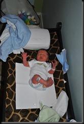 cullens birth 419
