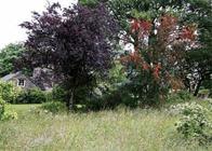Stunning Countryside Retreats