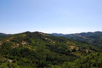 38-M.Castellaccio della Tana