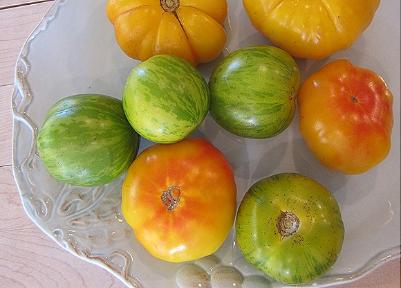 Some of Summer's Last Heirloom Tomatoes
