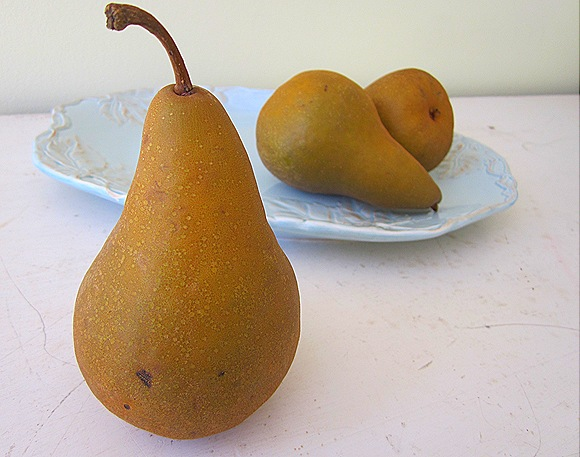 A Still-Life of Pears