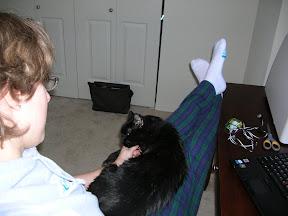 Sammy on my lap