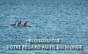 BlogOsmose - Votre regard au fil du monde