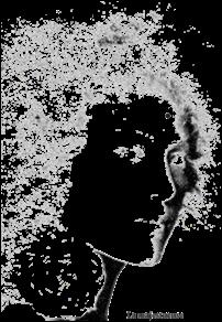Mouche de beauté : La majestueuse chez Arteeshirt.com