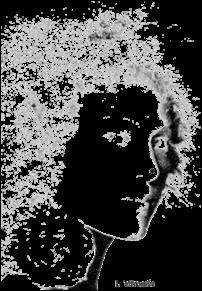 Mouche de beauté : L'effrontée chez Arteeshirt.com