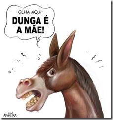 Dunga-burro