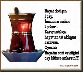 ZA.03.slaytyerim.com (11)