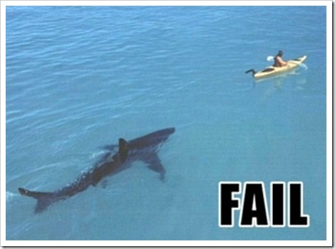 Shark fail.