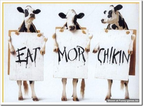 Funny cow picture - Eat more chicken.