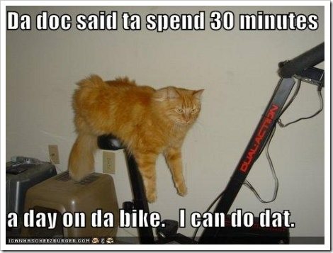 funny_fitness_cat%5B2%5D