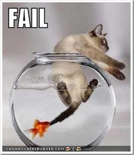 Imágenes Cómicas de Pesca Funny_cat_fail2%5B2%5D