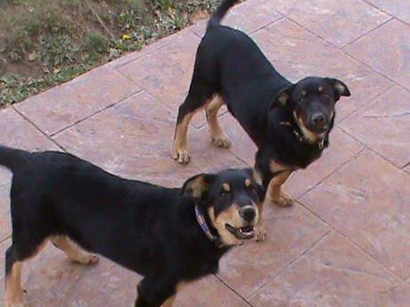 yaky y nuca 006