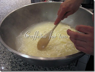 mozzarella 101 (4)