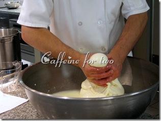 mozzarella 101 (12)