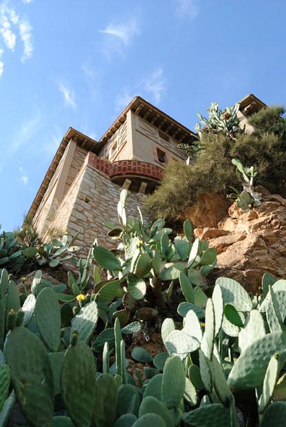 castle cliff cactus kaktus