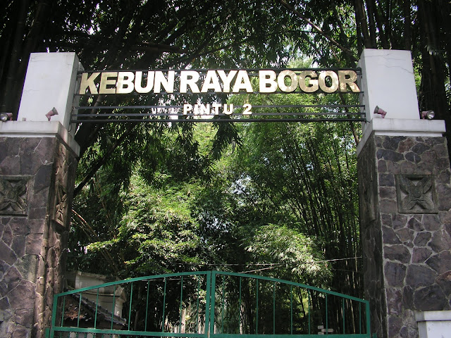 Selayang Pandang Kebun Raya Bogor, kebun raya, botanical garden