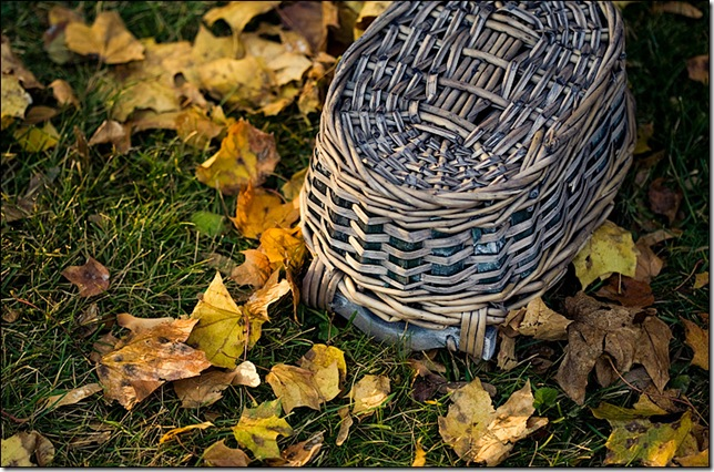 basket_fall_leaves_01