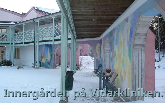Innergården-på-Vidarklinike