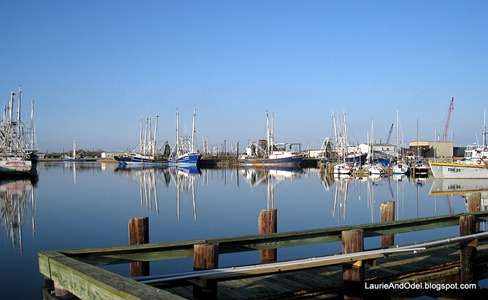 Shrimp boats at rest in the basin.