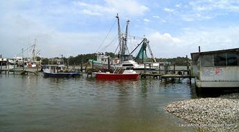 Fishing Fleet at Billy's