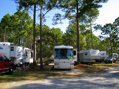 Our site in the tall pines at Pineglen RV park