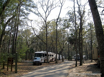 Site 24, camp area 1