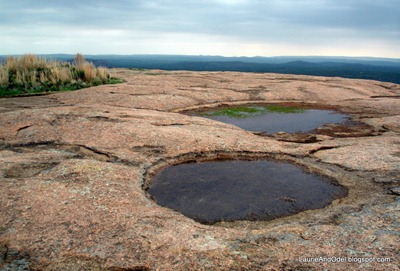 Pools on top of Enchanted Rock in 2008 in the Texas Hill Country.