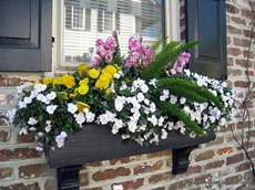 Flower box on brick wall.