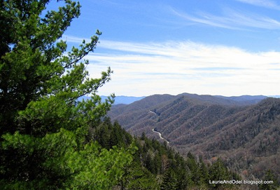 Looking back towards the Newfound Gap Road in the Great Smoky Mountains