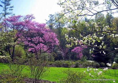 A walk in the Spring Garden.
