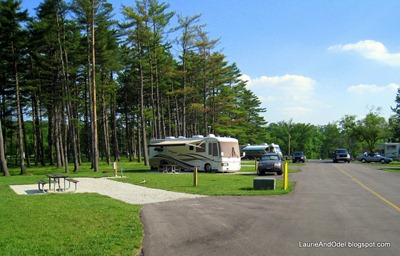 Back-in sites and campground road.