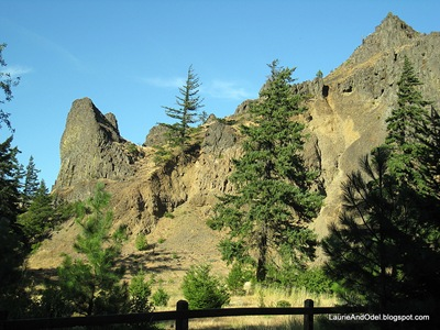 Trailside view of the basalt cliffs.