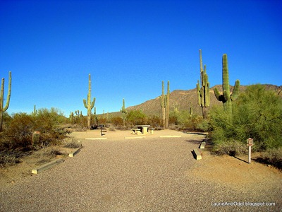 Typical back-in site at Usery Mountain Park