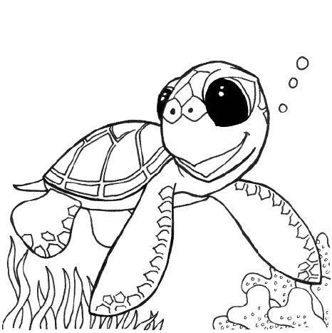 Tortuga marina bebé para colorear - Imagui