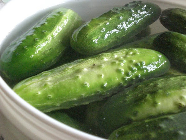 cucumbers in a barrel