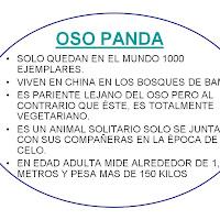 Diapositiva19-1.JPG