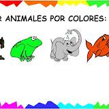 asociar por colores4.jpg