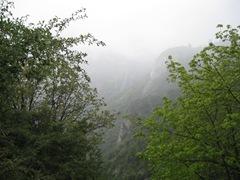 052310 scenic view fog