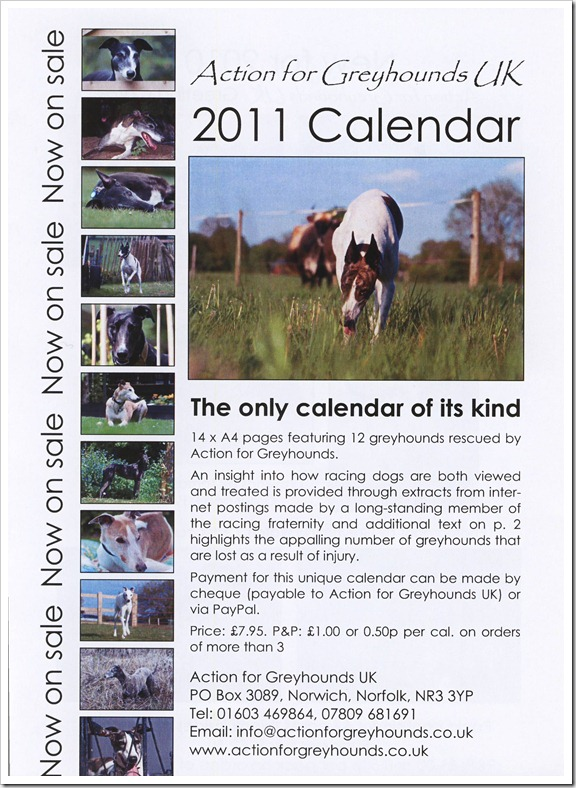 AFG 2010 Calendar